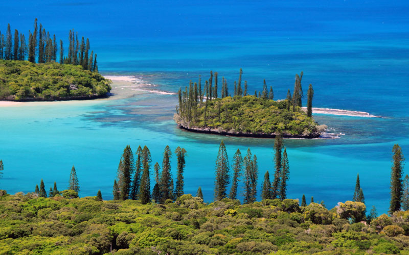 Info paysage nouvelle caledonie for Agence paysage nord